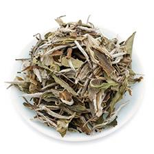 white-peony-tea-(1)