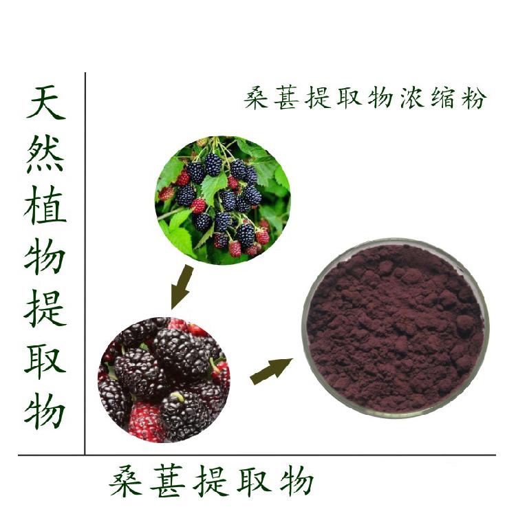 Details about 500g 10:1 Mulberry Fruit extract Powder juice powder /Morus  alba fruit powder