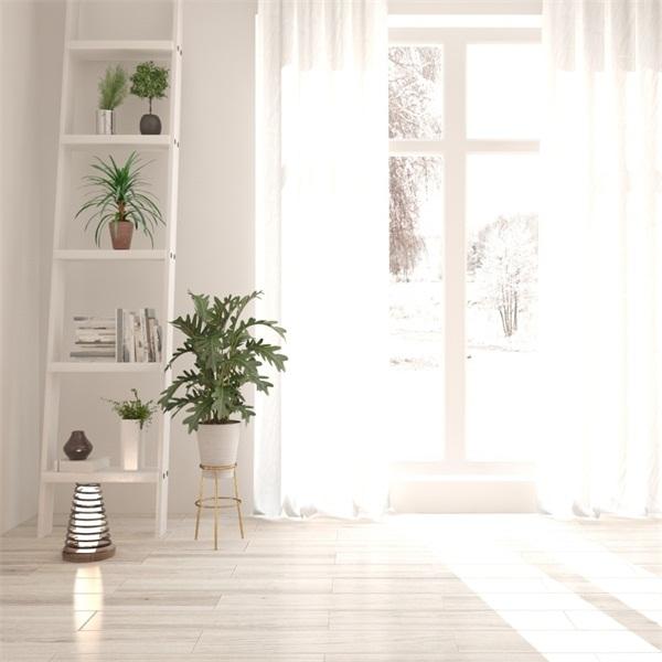 White Style Indoor Scene Photo Photography Background