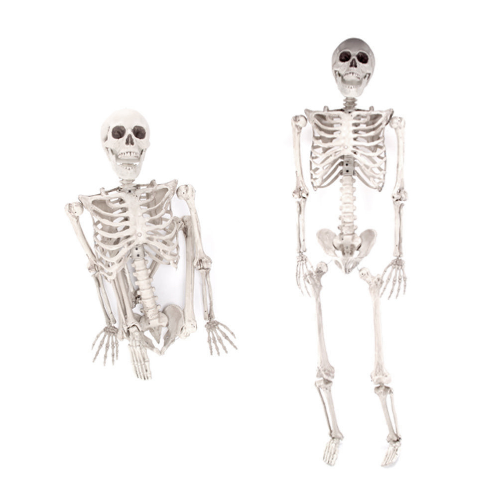 3ft Halloween Poseable Life Size Skeleton Party Prop Decor Human