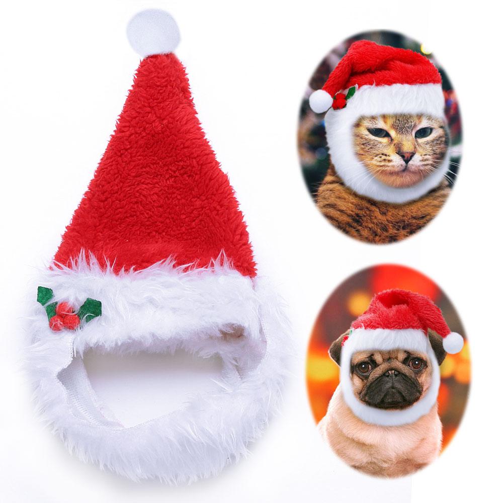 Pet Christmas Hat Small Dogs Puppy Cat Chihuahua Santa Hat Cozy Plush Padded Ebay
