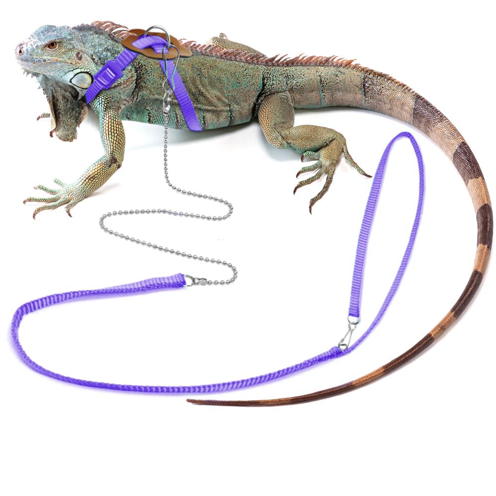 Reptile Lizard Harness Lead for Mini Animal Outdoor Walk Adjustable
