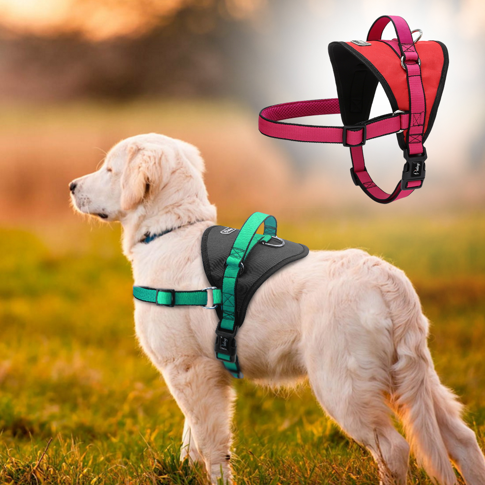 Large Dog Harness No Pull Nylon Dog Vest With Control Handle For Labrador Red