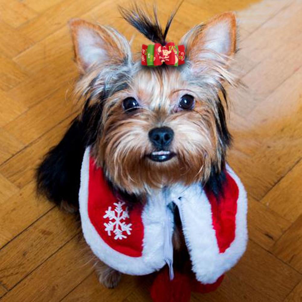 20pcs Pack Long Hair Dog Christmas Hair Bows Grooming
