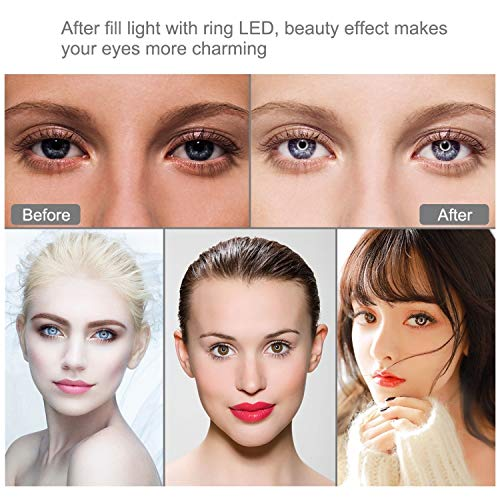 Dimmable LED Lighting Replacement Light for Teaching Online YouTube Video Production Light B-Qtech Ring Fill Light for Live Streaming Tripod Photography