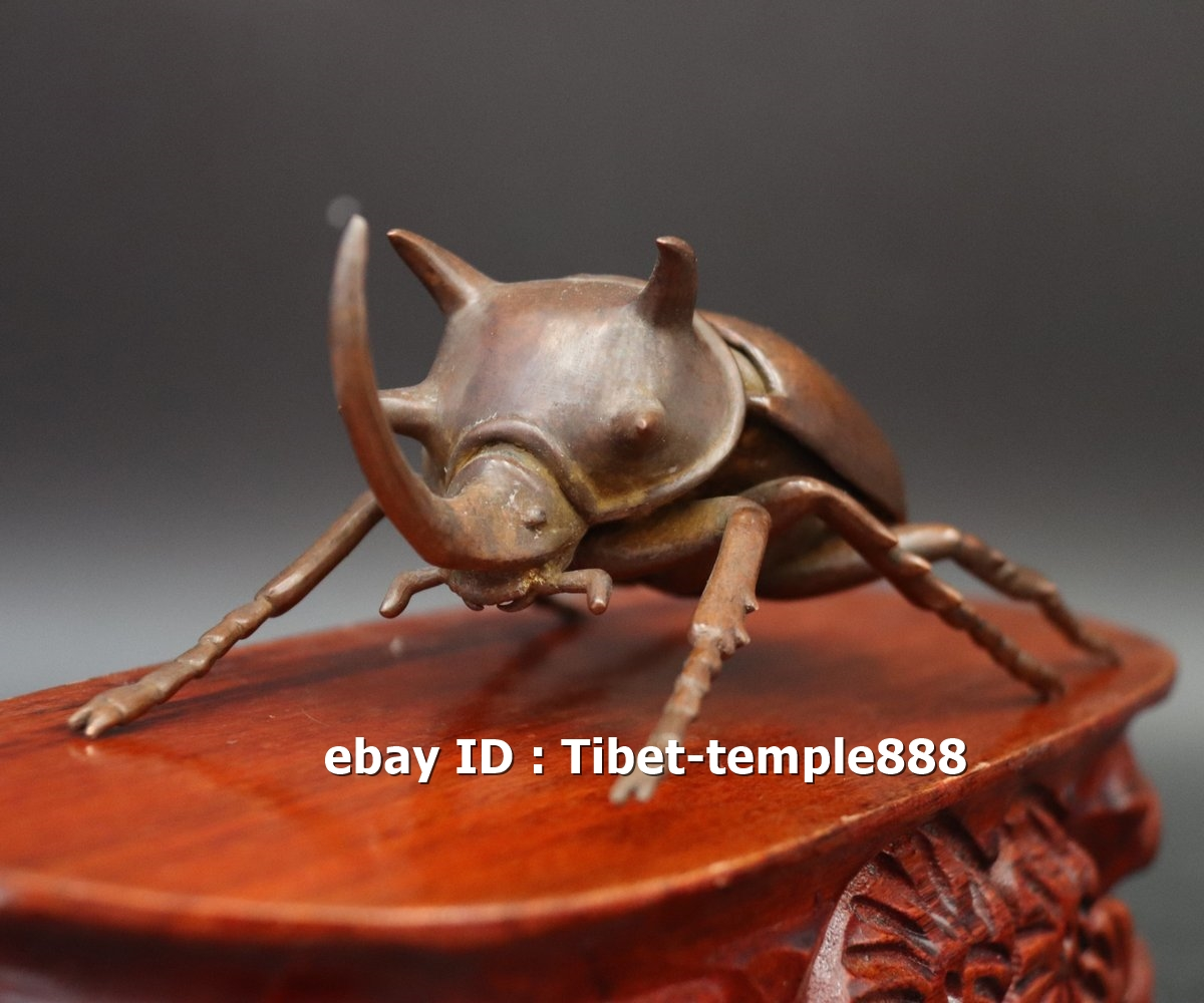 17 CM Chinese Copper lifelike Animal Insect dung beetle Beatles Statue small box