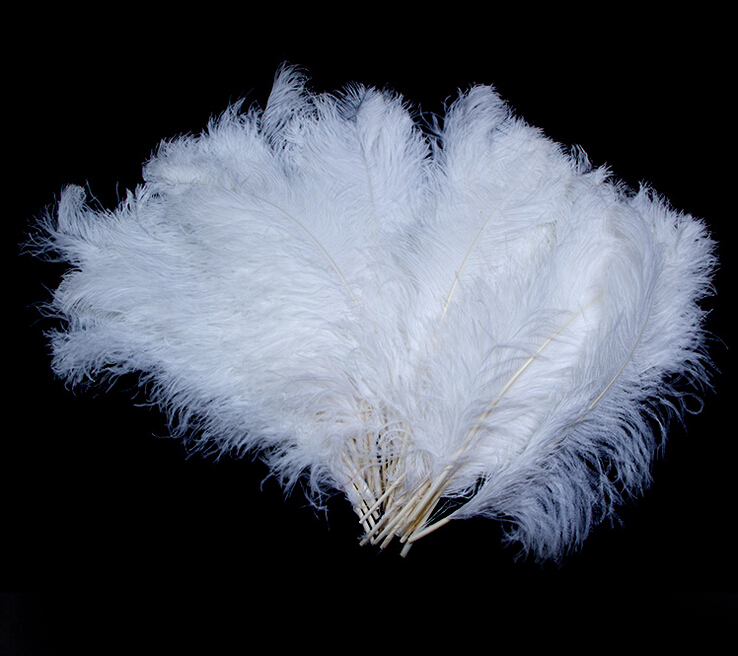 Wholesale 10-100pcs Natural Turkey Feathers 30-35cm//12-14inches For Decoration