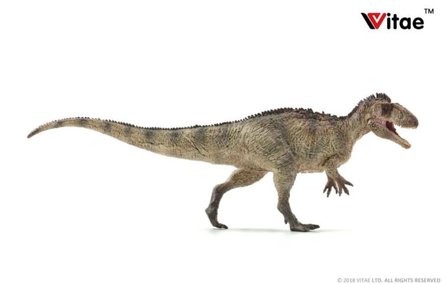 Vitae Jurassic dinosaur modle Pterosauria HOT FIGURE TOYS in stock