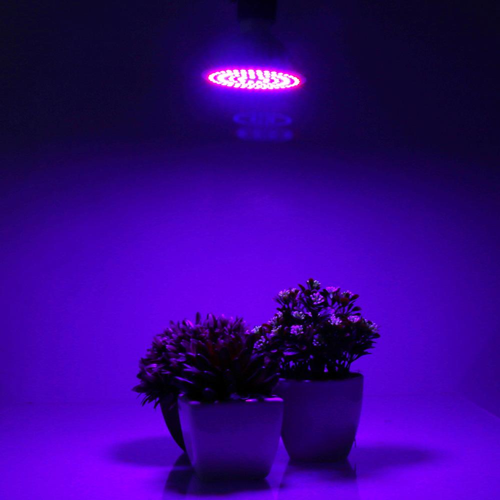 20w 90 led pflanzen lampe gewchshaus pflanzenleucht grow licht 20w 90 led pflanzen lampe gewchshaus pflanzenleucht grow licht wuchs blte parisarafo Image collections