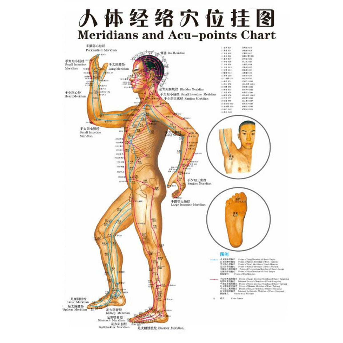Chinese Medicine Body Acupuncture Points Meridians And Acupoints Chart Map