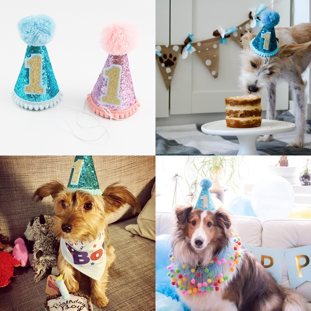 Details About Pet Dog Cat Birthday Hat Party Headwear Costume Accessories For Puppy Blue Pink